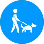 Harmonious Hounds, Dog Training, Pet care New Bedford, MA