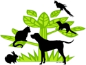 New Bedford Coalition for Animals Logo